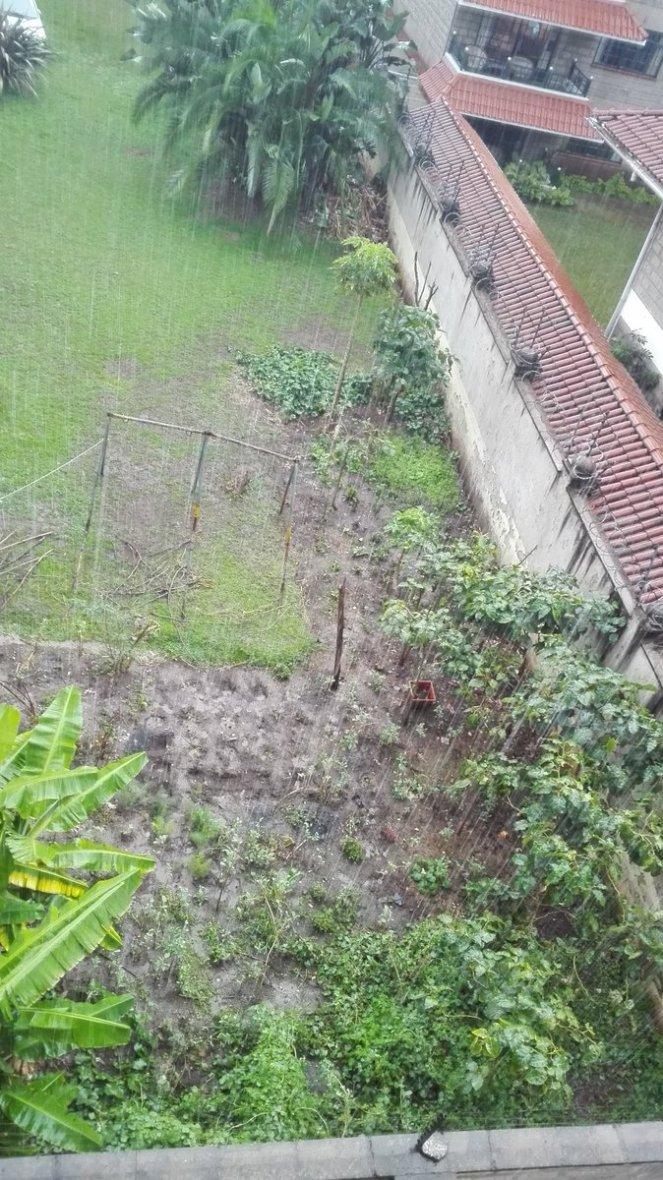 Rain Nairobi Kenya